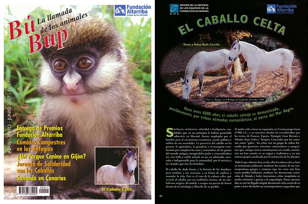"""""""El caballo celta"""", un artículo publicado en la revista """"BupBup, la llamada de los animales"""" de la Fundación Altarriba, 2007"""